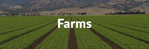 LARABA - subtitle Farms