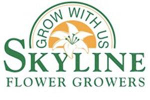 city hall farmers market - logo for Skyline Flowers