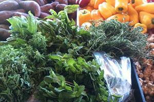 city hall farmers market - Yang Farms
